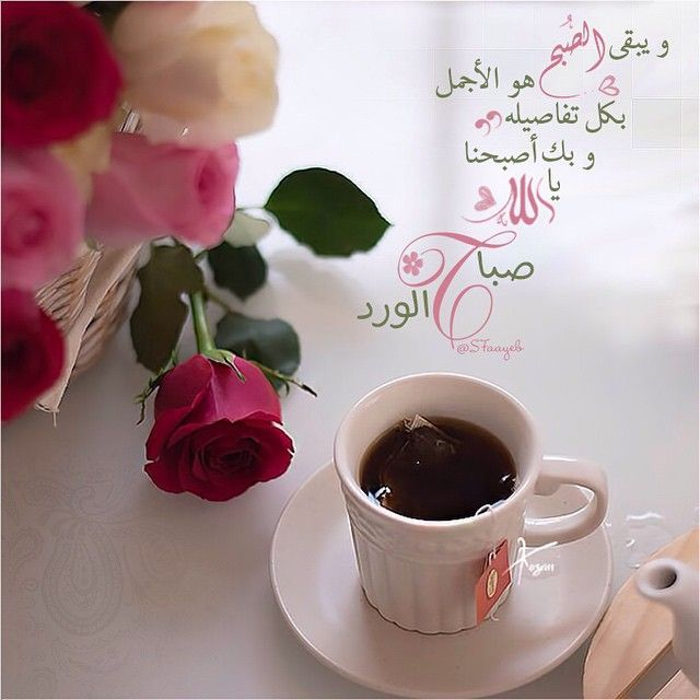 See This Instagram Photo By S7aayeb 282 Likes Beautiful Morning Messages Good Morning Images Good Night Messages
