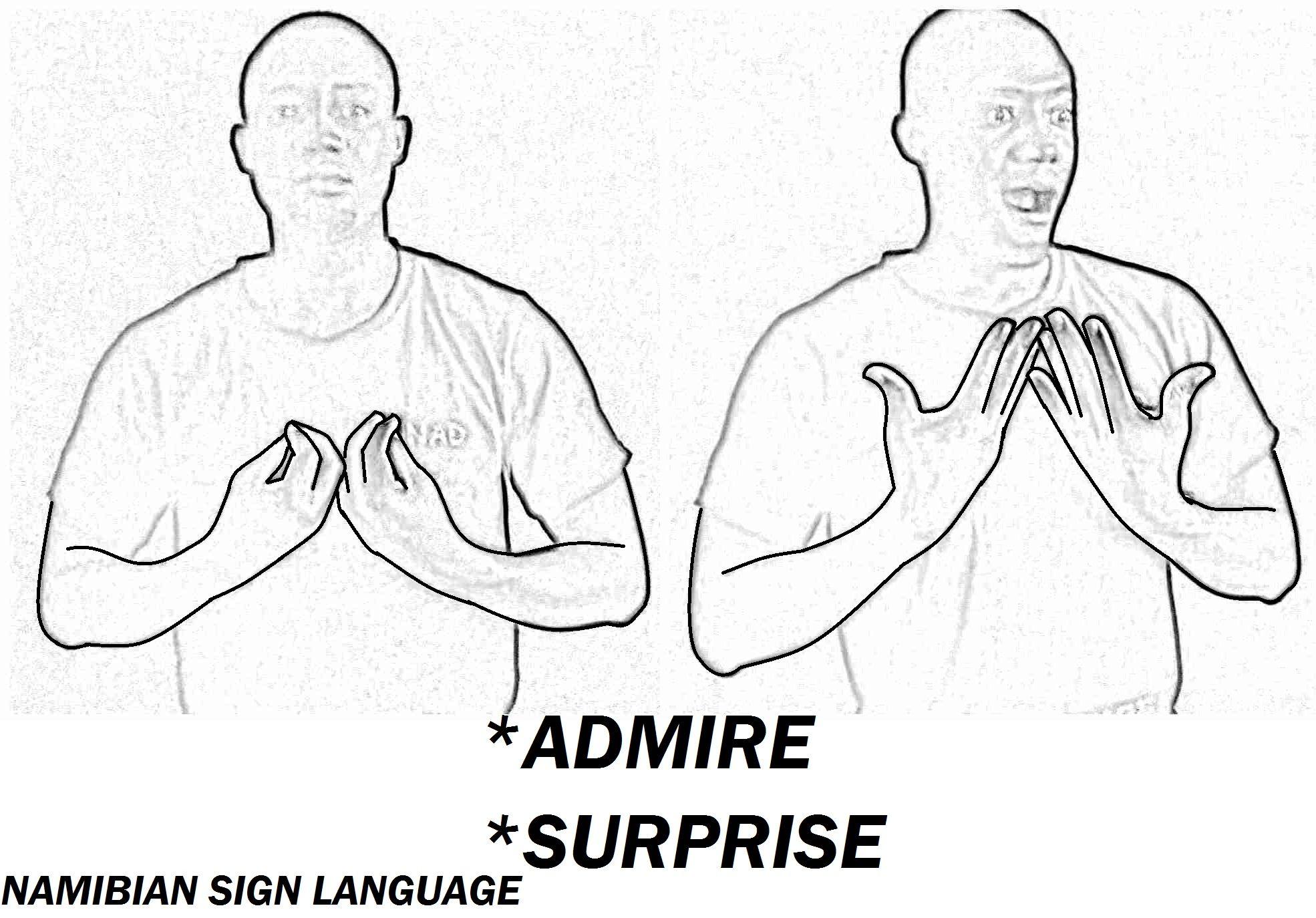 Pin Van Erasmus Shindodi Op Namibian Sign Language Signs
