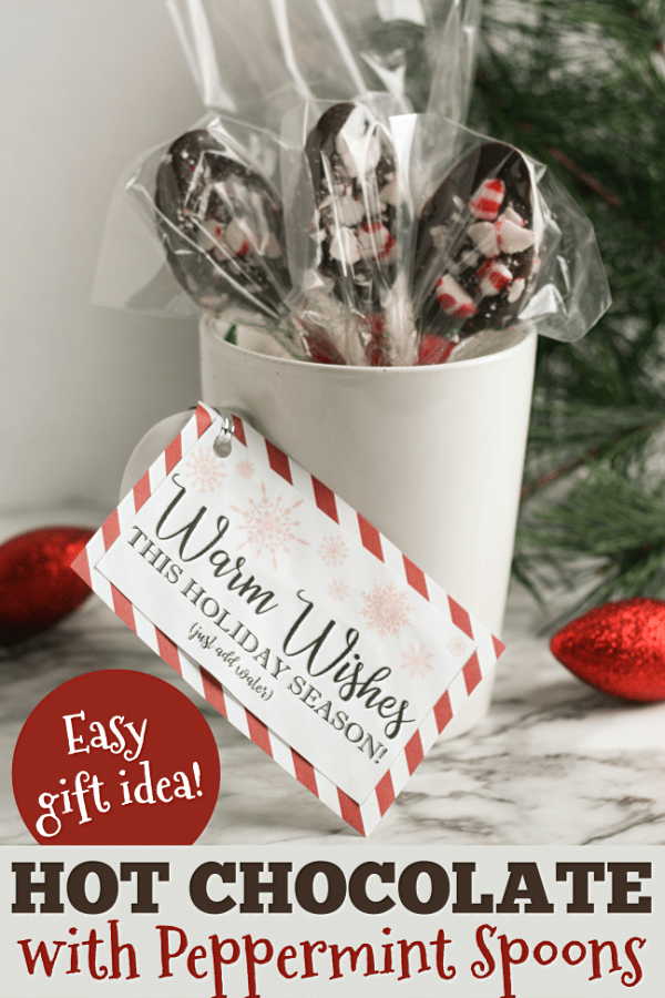 This Diy Hot Chocolate Gift Idea Is An