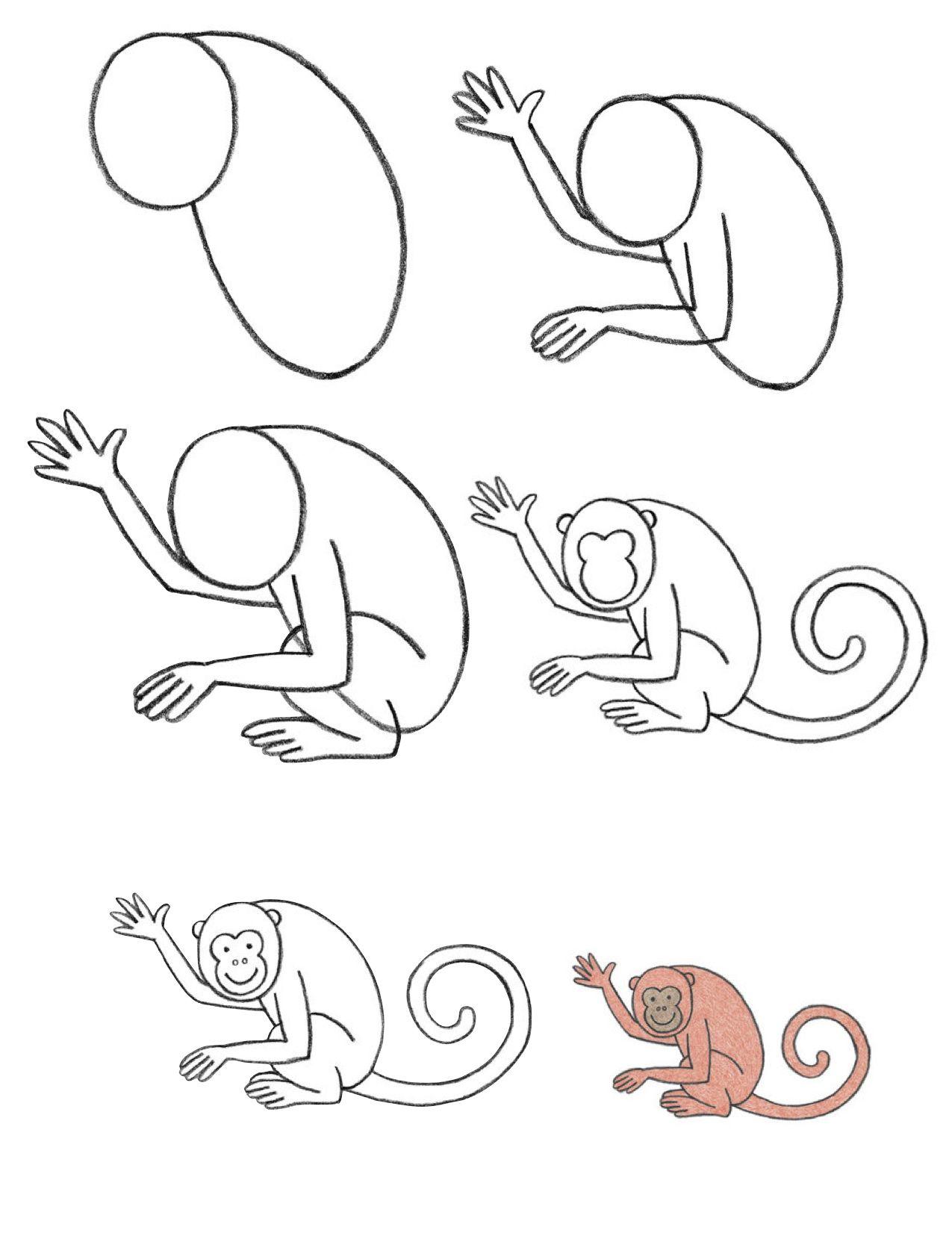 Aprender a dibujar fácilmente un mono. - easly learn to draw a ...