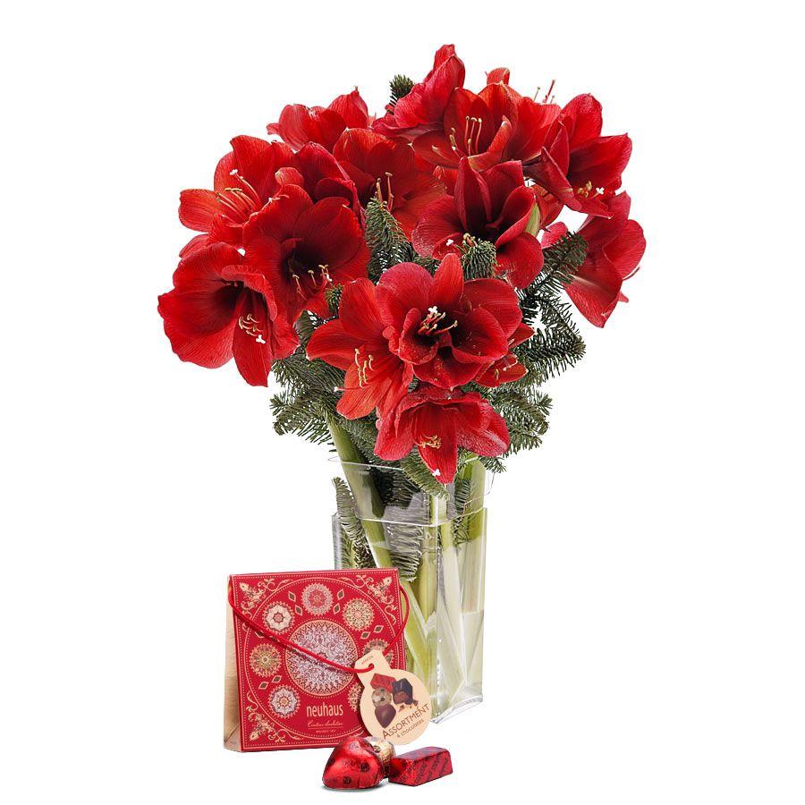 Elegant Amaryllis Luxury Christmas Gifts Amaryllis Wine Gifts