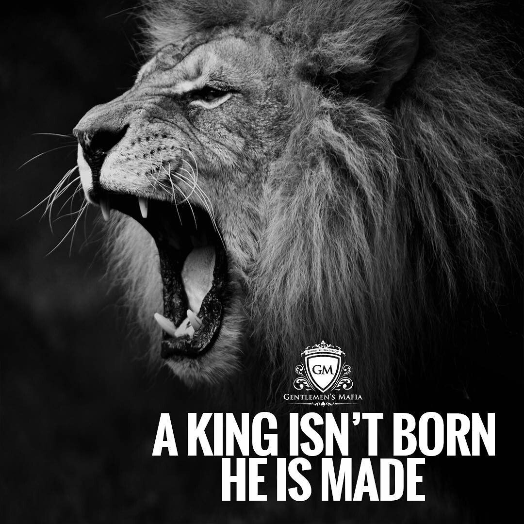 Motivational Quotes With Lion Images: A King Isn't Born. He Is Made.