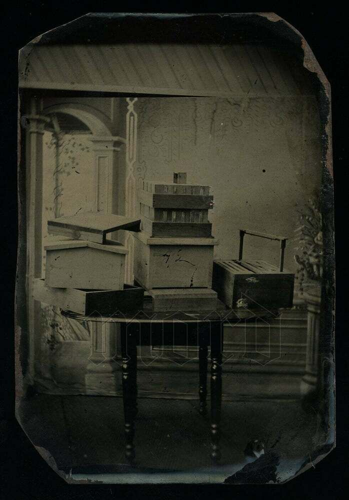 Pin by Robin Hill on Won't you bee mine? in 2020 (With images) | Tintype photos. Tintype. Bee keeping