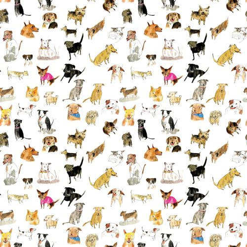 elizabethgraeber:a pattern of adoptable dogs.
