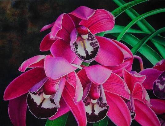 julio casanova cymbiduim (orquidea)