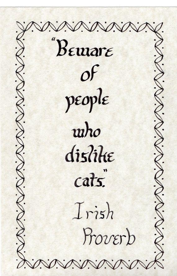 Beware Of People Who Dislike Cats Custom Order