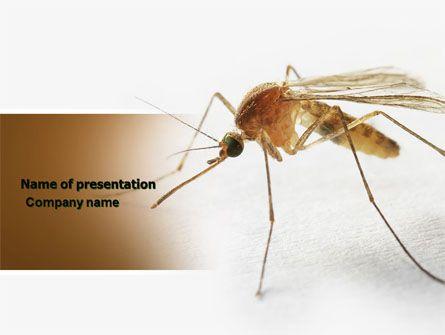 HttpWwwPptstarComPowerpointTemplateMosquito Mosquito