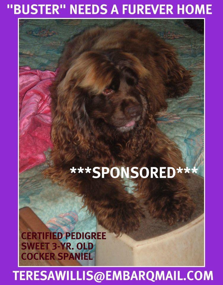 DeFuniak Springs, FL (850) 8928682 WALTON COUNTY ANIMAL