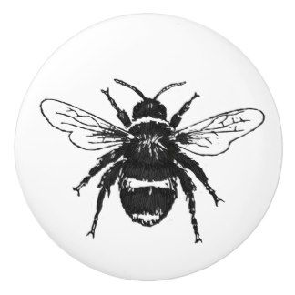 Bumble Bee Illustrated Knob Ceramic