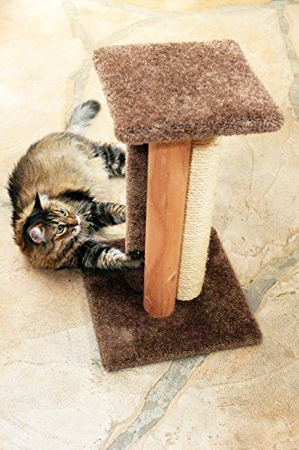 Cat Scratching Post Bed 24 inch Carpet Cat Scratcher Rope, Brown Carpet *** Be sure to check out this helpful article. #CatBedsFurniture