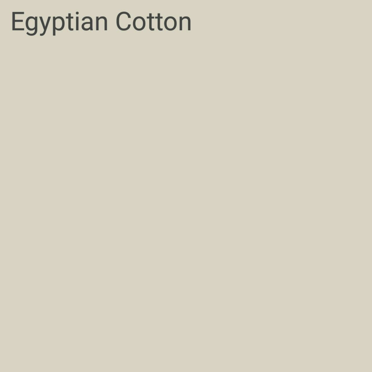 Egyptian Cotton Kitchen Paint