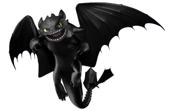 Night Fury Toothless Pinterest How Train Your Dragon How To