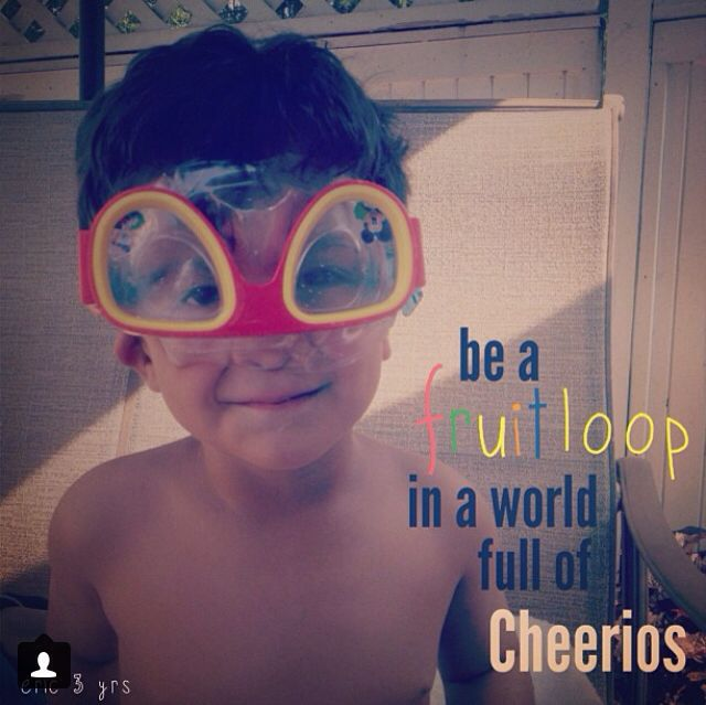 My nephew Eric living life as a fruitloop in a world full of cheerio's.  find me on instagram: stephyscraps