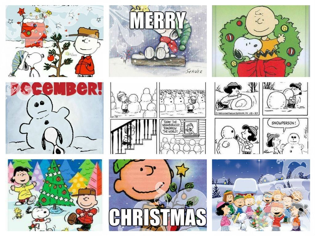 peanuts quotes peanuts christmas peanuts snoopy funny funny funny charlie brown planners cartoons funny stuff animated cartoons - Peanuts Christmas Quotes