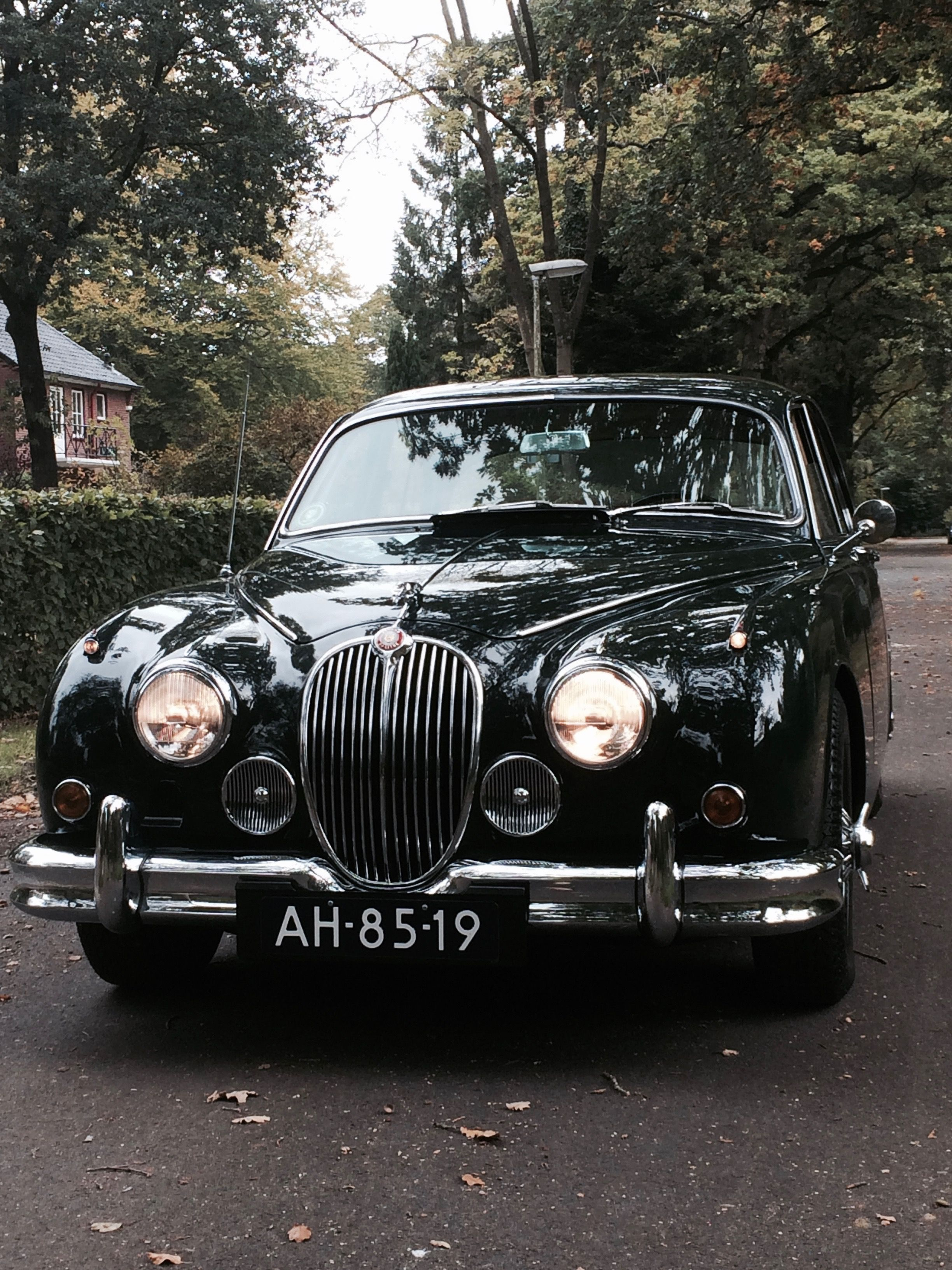 Pin By Pete On My Jag Classic Cars British Classic Cars Jaguar Car