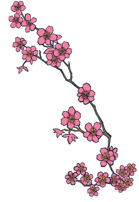 Purty Cherry Blossoms Cherry Blossom Drawing Blossom Tattoo Cherry Blossom Tattoo