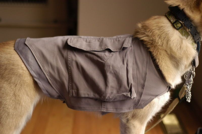 Make Your Own Doggie Cooling Vest And Backpack From Old Cargo