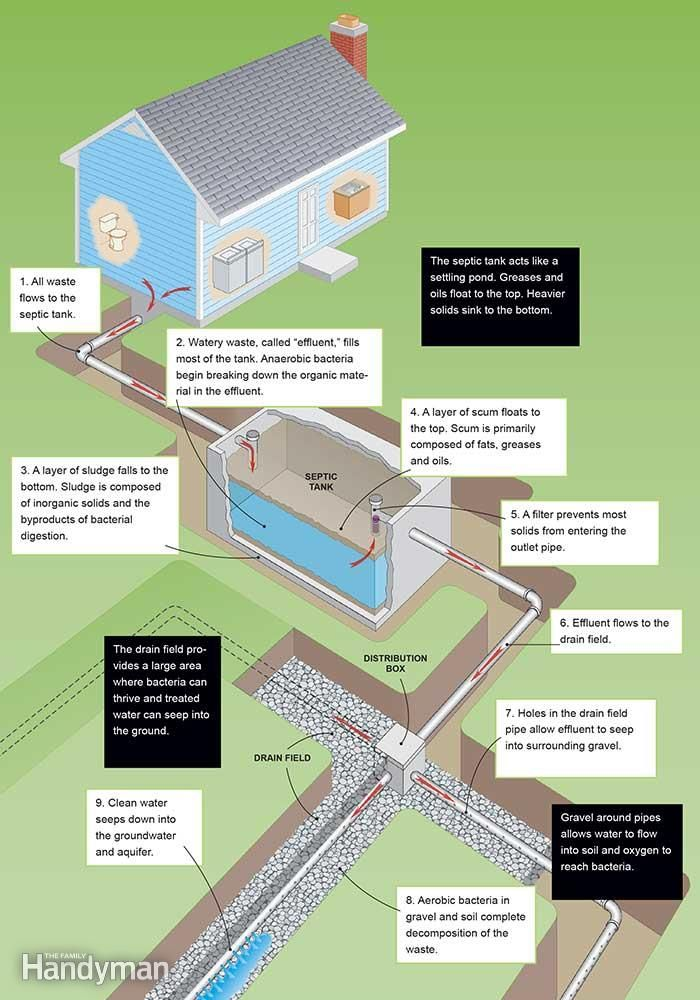 How Does A Septic Tank Work Newsmart Homeowner Pinterest