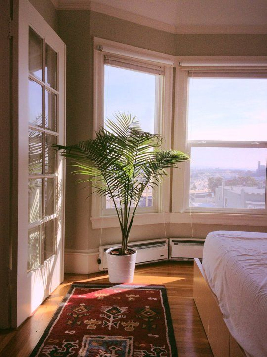 Xing S San Francisco Style Small Cool Apartment Therapy