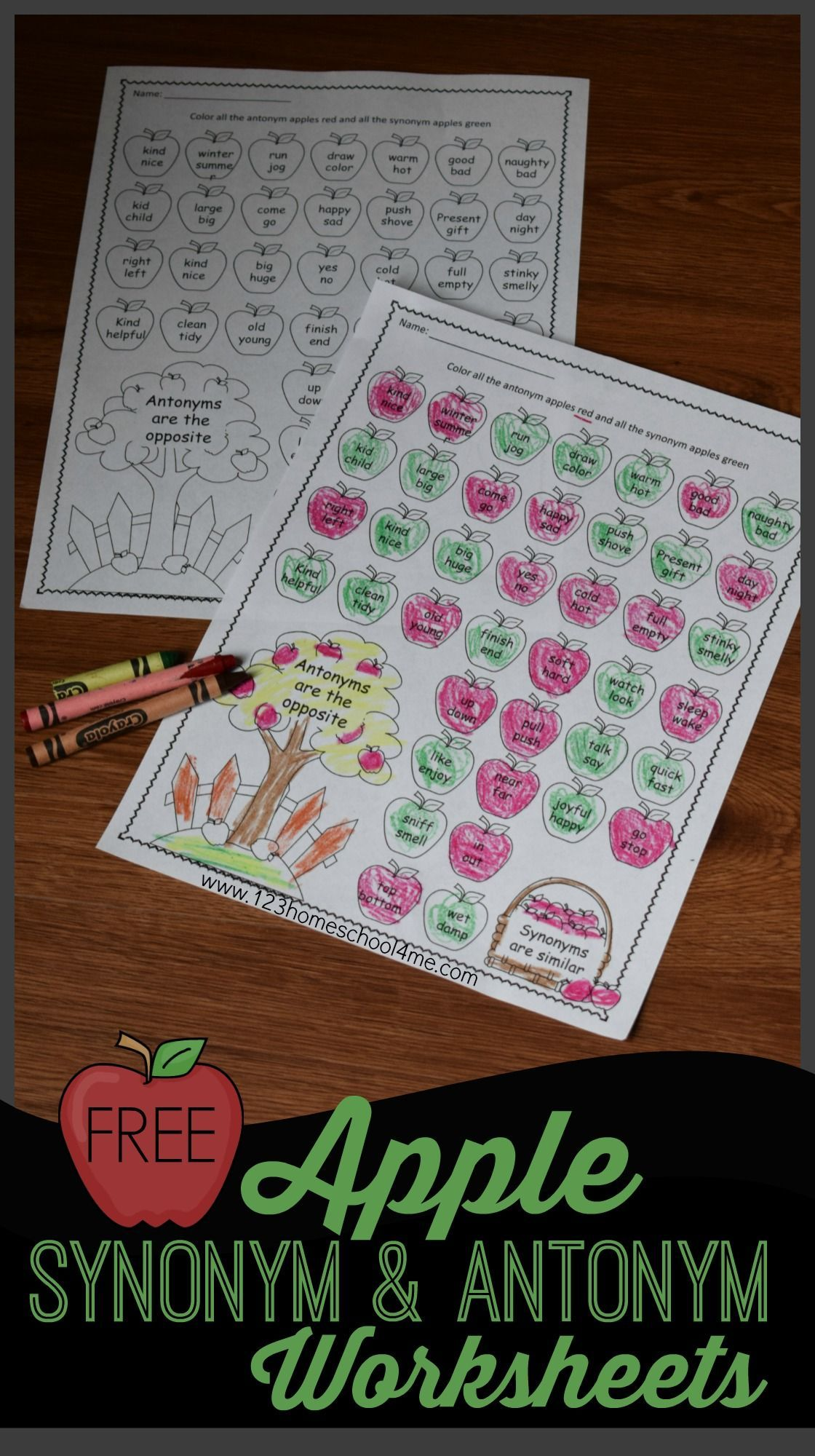 Apple Synonym And Antonym Worksheets
