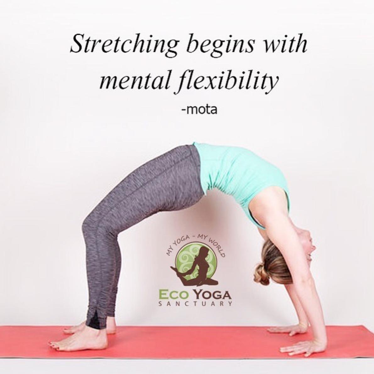 Stretching Begins With Mental Flexibility Mota Yoga Sanctuary Yoga My Yoga