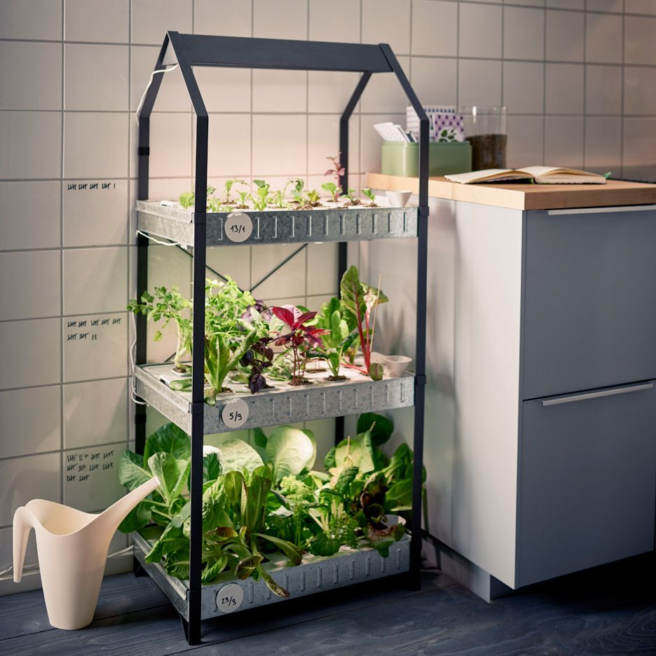 Ikea introduce a hydroponic indoor gardening kit Indoor