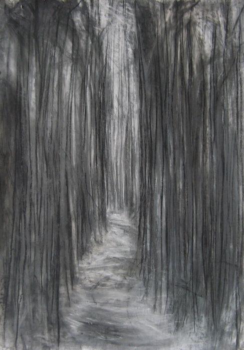 Passage Janine Baldwin Graphite Charcoal And Pastel On Paper 83 X 58cm Www Janinebaldwin Com Charcoal Drawing Landscape Drawings Landscape Sketch