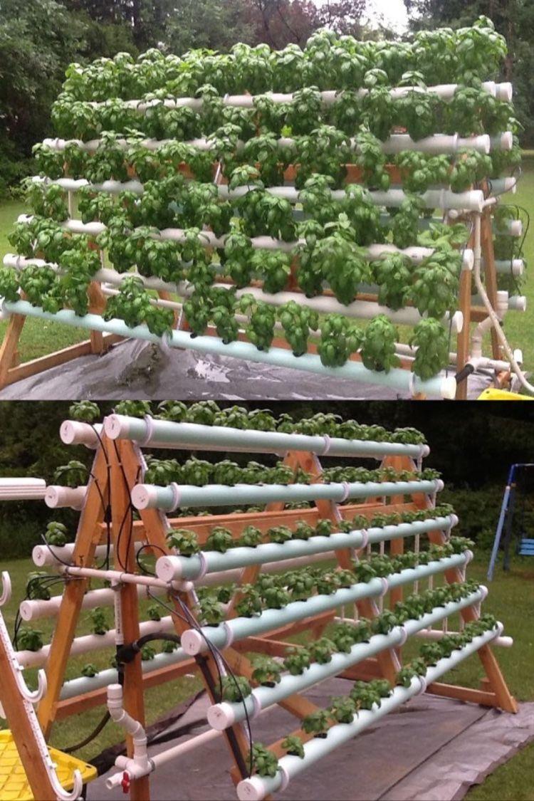 Cómo Crear Un Sistema Hidropónico Casero Con 168 Plantas Sistemas De Cultivo Hidropónico Huerta Hidroponica Sistema Hidroponico