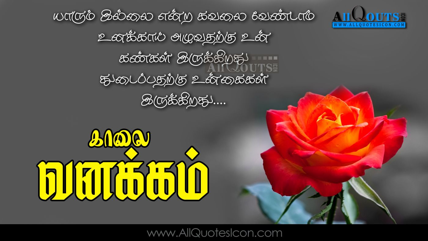 Best Good Morning Quotes In Tamil Hd Wallpapers Best Life Motivational Thoughts And Sayings Good Morning Quotes Morning Quotes Motivational Good Morning Quotes