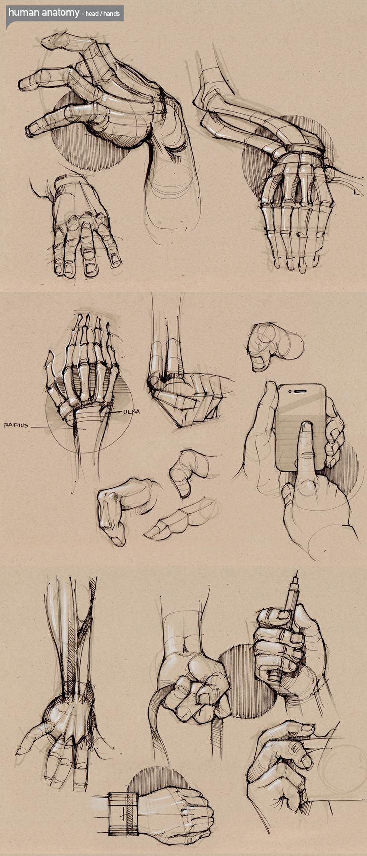 Aprenda a Desenhar #1 | Pinterest | Anatomy, Draw and Sketches