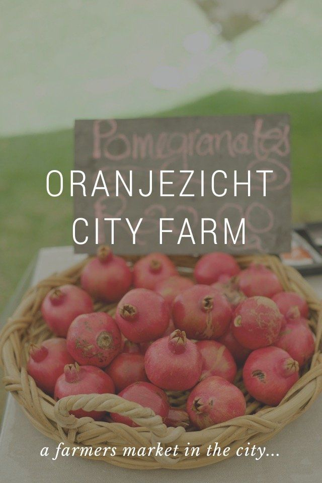 ORANJEZICHT CITY FARM a farmers market in the city... The Oranjezight City Farm (OZCF) is an amazing neighbourhood non-profit project celebrating local food, culture and community in Cape Town, South Africa. Every Saturday a market is held to invite and