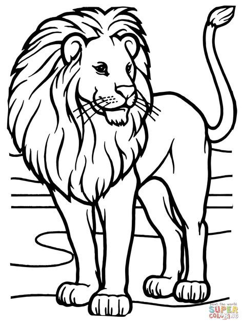 könig der tiere  super coloring  löwen malvorlagen
