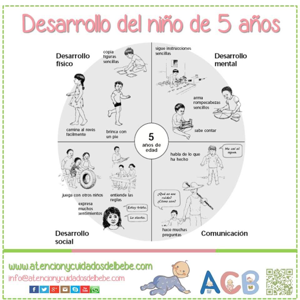 Desarrollo Del Niño De 5 Años Atencionycuidadosdelbebe Desarrolloinfantil Estimulación Temprana Psicologia Niños Psicologia Infantil