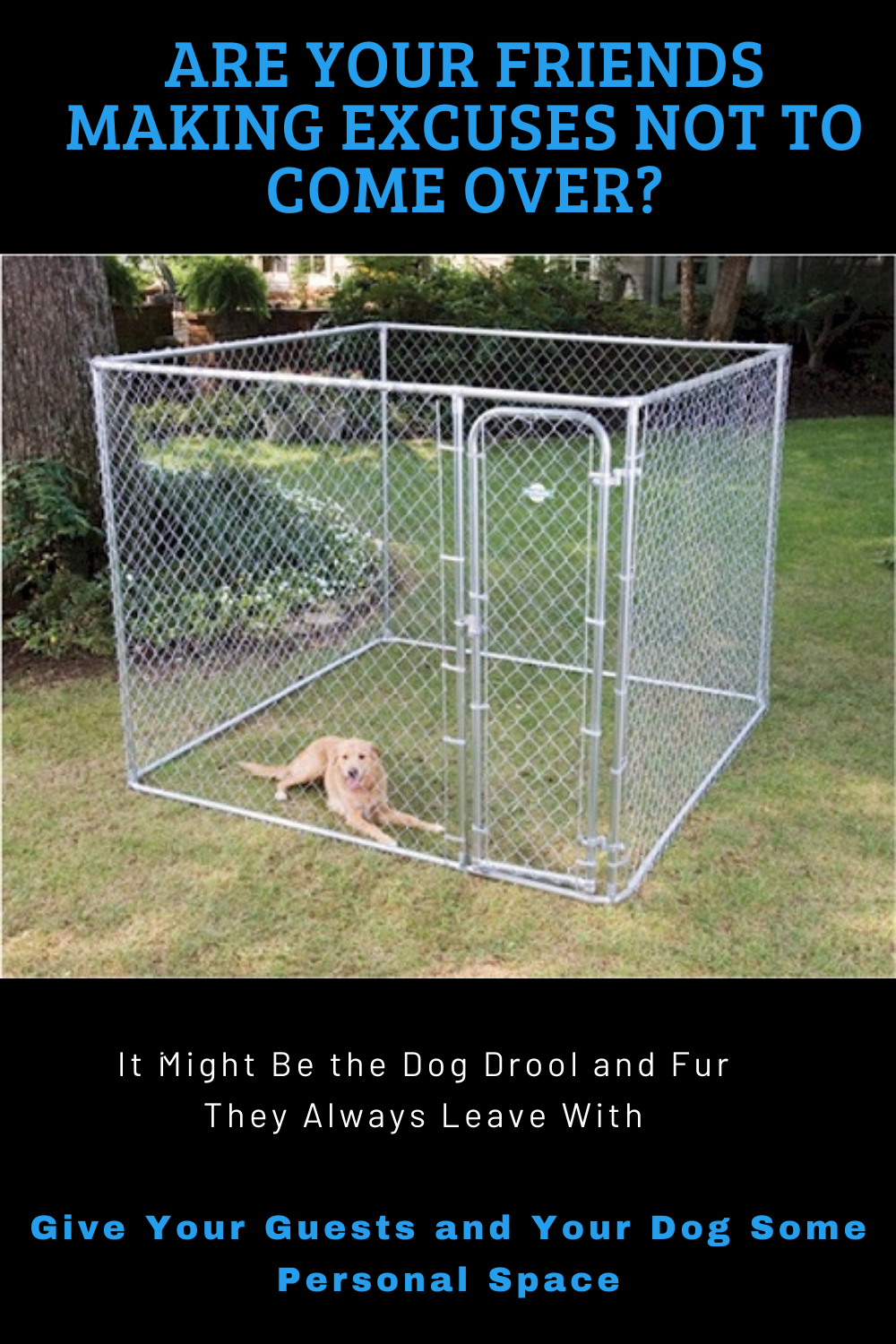 Free Shipping Right Now On Dog Kennels! Distance Your Guests From Your Loveable but Overly Friendly Pup!