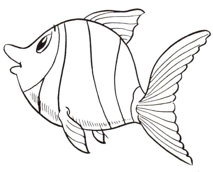 Moldes De Peixes Moldes De Peixes Bonecos Para Pintar Peixe