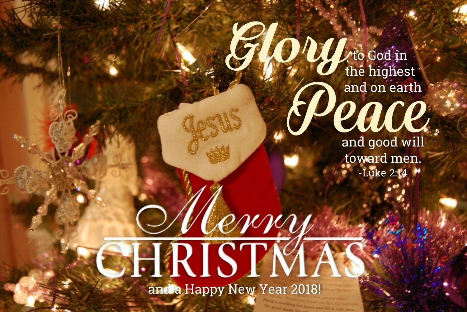 Glory to God in the highest. Peace on earth and good will towards men. Celebrate the season of ...