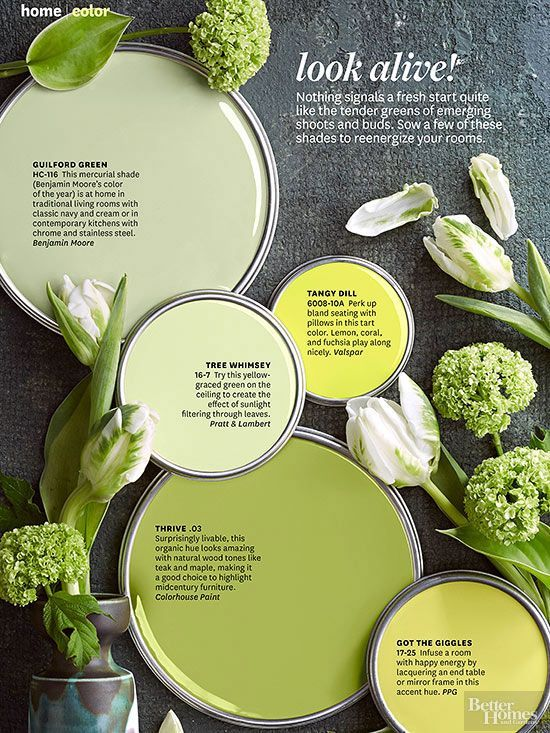Paint Colors | Pinterest | Green paint colors, Benjamin moore and ...