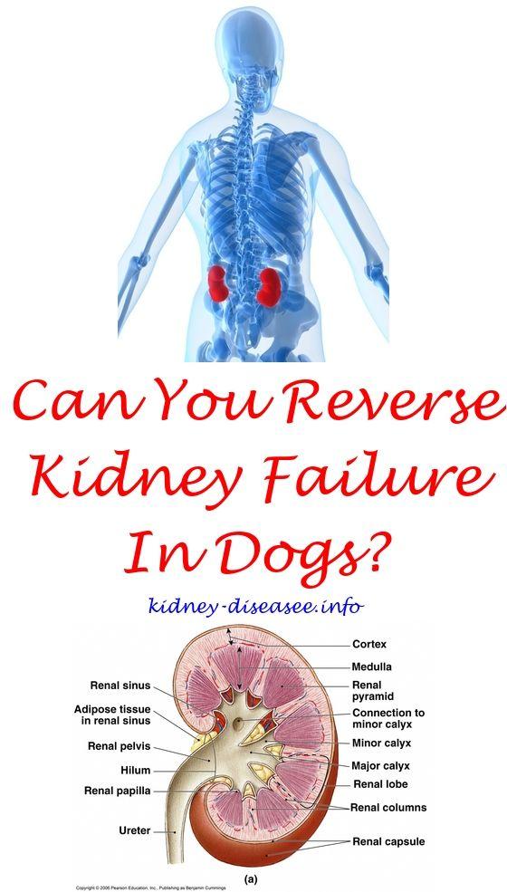 Esrd Transplant   Kidney disease, Kidney stones and Remedies