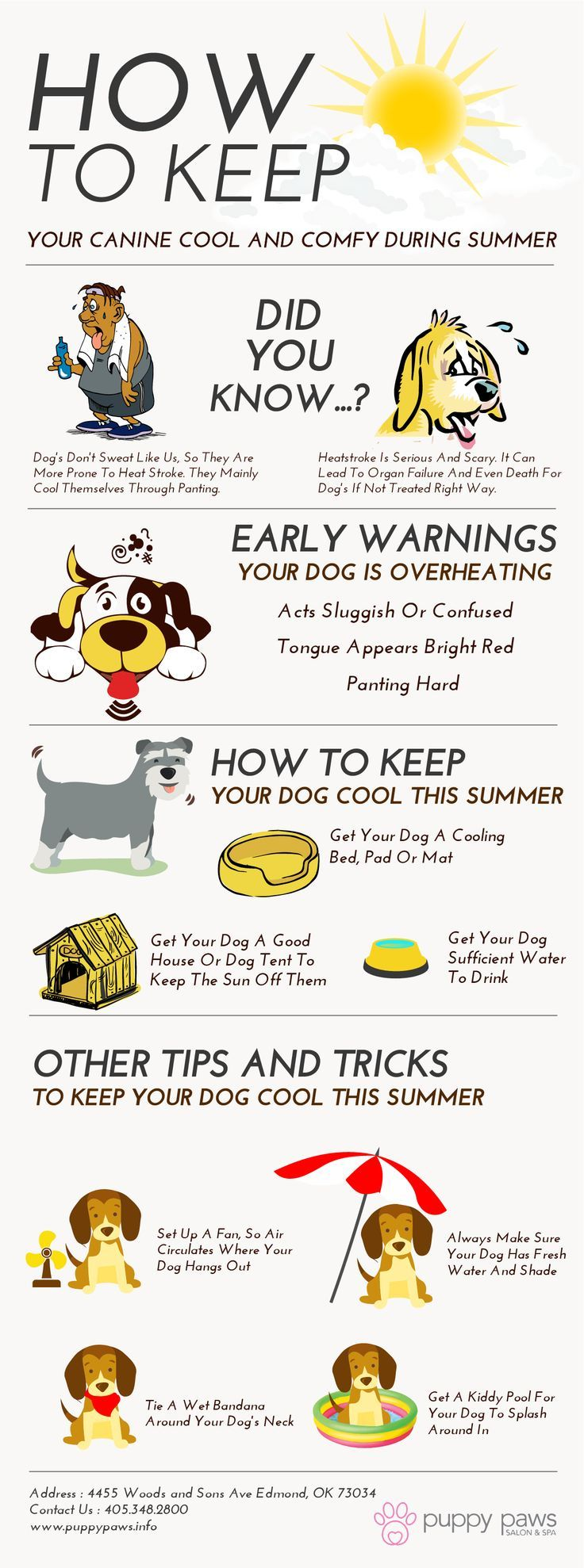 Dogs Are Often Prone To Heat Stroke And Hence It Is Essential To Keep Them Cool During Summer Puppy Paws Salon An Summer Dog Heat Stroke In Dogs Dog Training