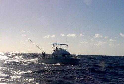 Deep sea fishing st marten st martin out between st for St maarten fishing