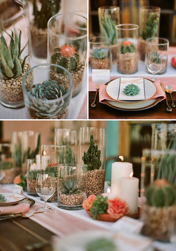give me the succulents home stuff pinterest cactus wedding wedding decorations and wedding. Black Bedroom Furniture Sets. Home Design Ideas