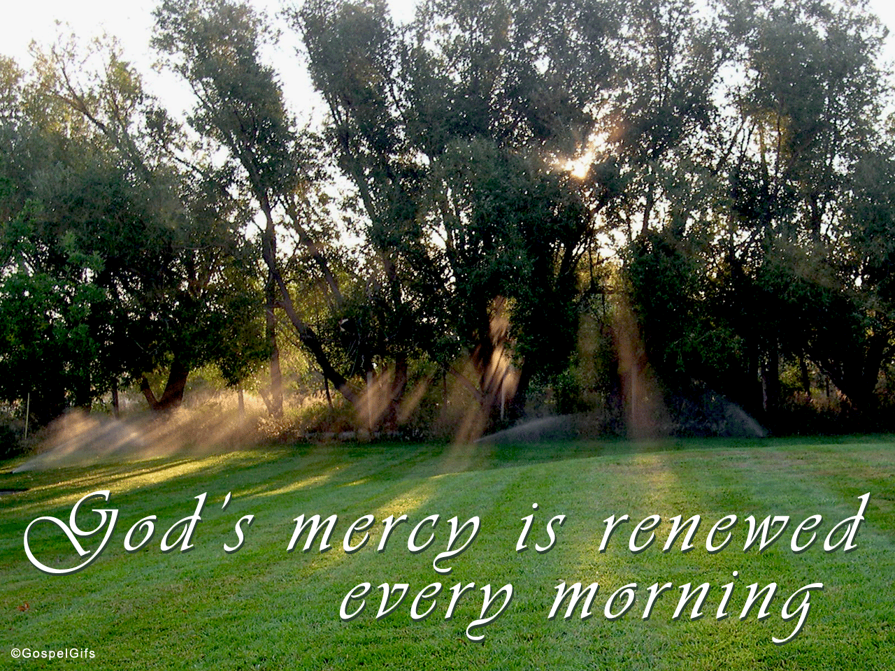 God's Mercy is New Every Morning