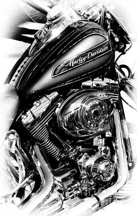 Photo of Informationen zu Chromed Harley Monochrome Poster by Tim Gainey Pin  Sie können…