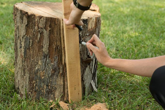 How to Make a Cutting Board Out of a Tree | DIY | Diy