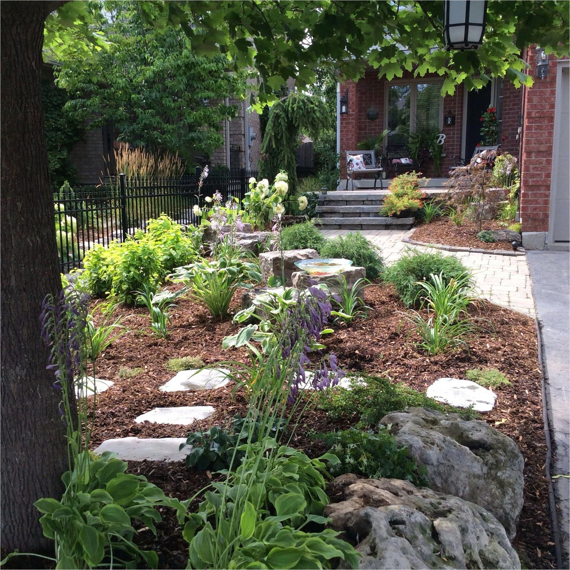 41 Adorable No Lawn Front Yard Landscaping 24 Small Front ...