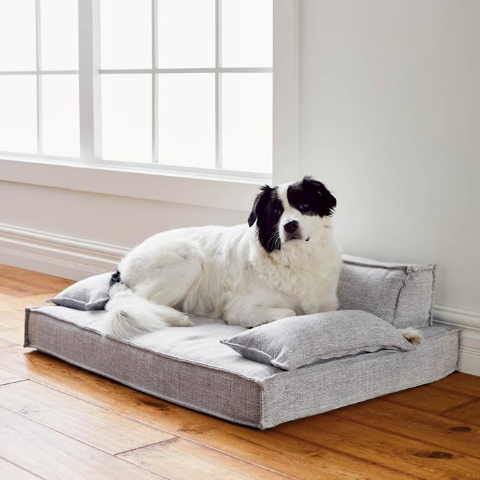 Moderno Pet Bed Frontgate in 2020 Comfy couch pet bed