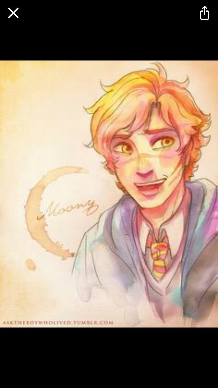 Pin by DaniLS on Mischief Managed | Harry potter fan art, Harry