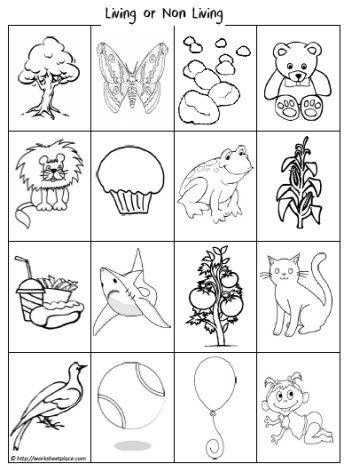 Living Or Non Living Sort Worksheets Living And Nonliving Science Lessons Kindergarten Math Worksheets Addition