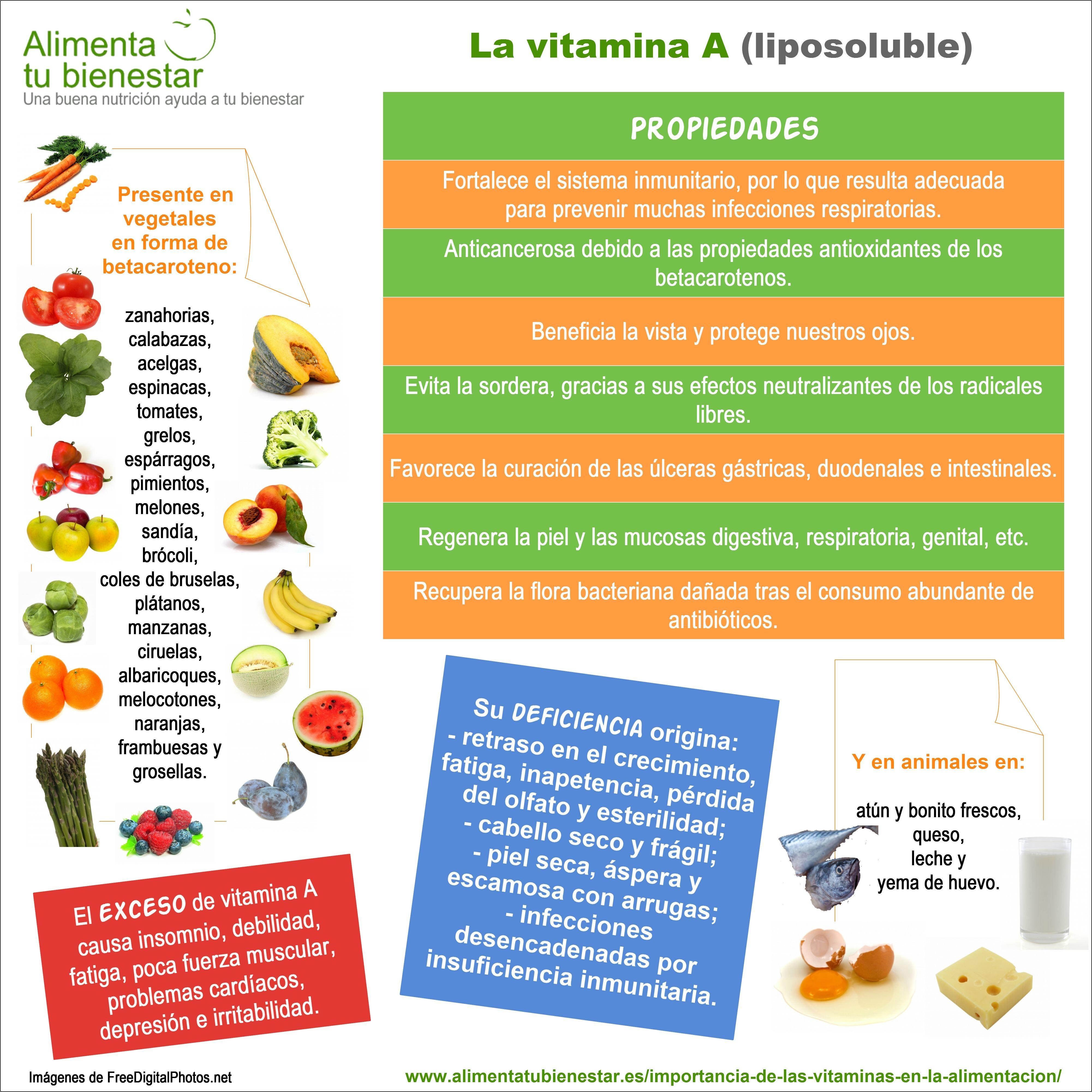 beneficios de una alimentacion adecuada y nutritiva