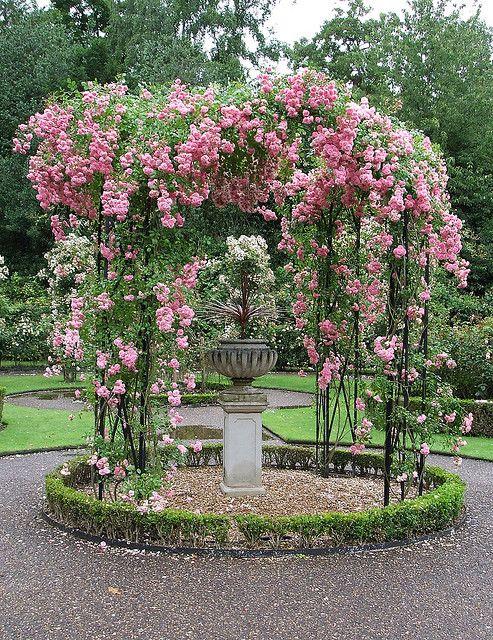 Rose Gazebo Beautiful Gardens Rose Garden Design 640 x 480